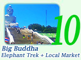Big Buddha + Elephant Trek