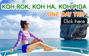 Koh Rok Koh Ha Koh Pida Day Trip