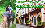 Phuket City Tour and Elephant Trekking