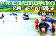 2Days1Night Elephant Bath Mountain and Dam