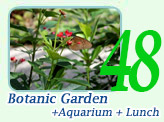 Botanic Garden and Aquarium and Lunch