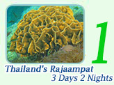 Thailand's Rajaampat. 3 Days 2 Nights