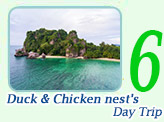 One Day Trip: Duck and Chicken nest's Islands.