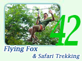 Flying Fox and Safari Trekking