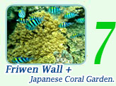 Friwen Wall and Japanese Coral Garden