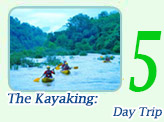 The Kayaking: Day Trip