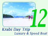 Krabi Day Trip by Luxury and Speed Boat