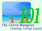 The Green Mangoes and Similan Tachai Island