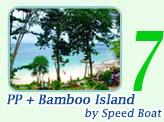 PP Maya Bamboo