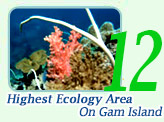 2 Days 1 Night to Highest Ecology Area-On Gam Island