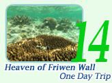 One Day: Heaven of Friwen Wall