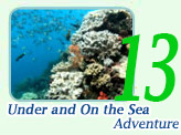 Rajaampat-Under and On the Sea Adventure