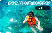 Raya Island Half Day Trip