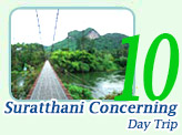 One Day : Suratthani Concerning