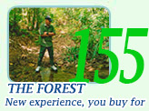 The Forest, New experience, you buy for