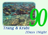 Trang and Krabi 2 Days 1 Night