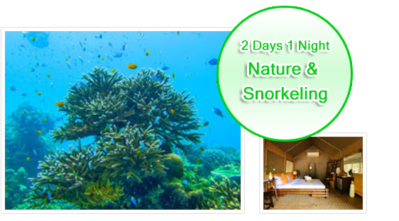 2Days1Night Nature and Snorkeling