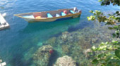 One Day Tour Snorkeling Raja Ampat