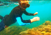 The new story snorkeling Thailand Chumphon